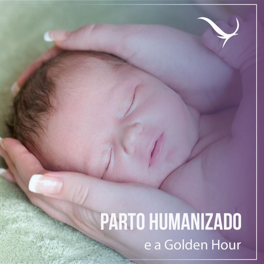 Read more about the article Parto humanizado e a Golden Hour