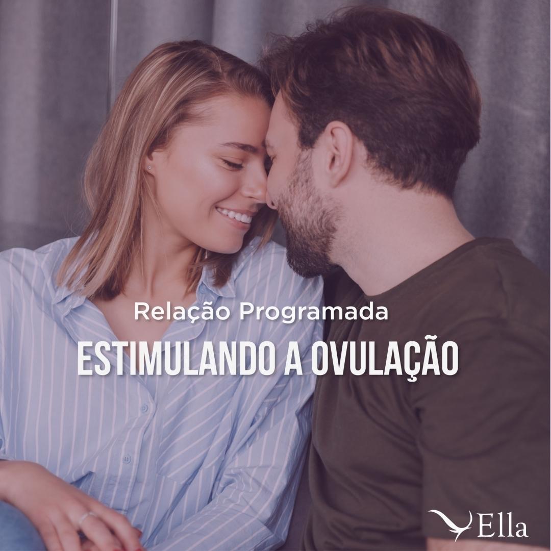 You are currently viewing Relação programada