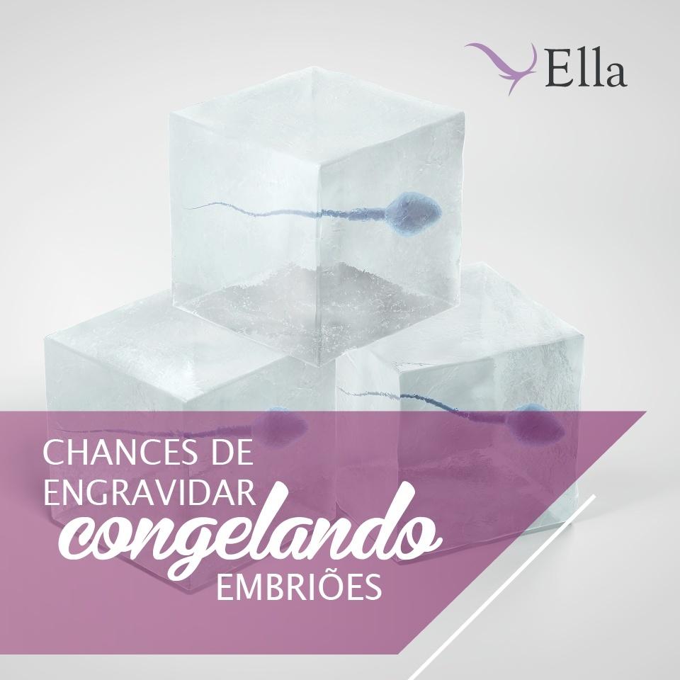 You are currently viewing Chances de engravidar congelando embriões